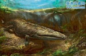 虾蟆螈,吃恐龙的史前恐怖生物
