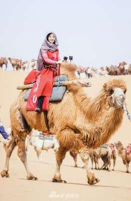 赵丽颖漫漫黄沙中悠哉骑骆驼 满脸笑容是挡不住的小太阳